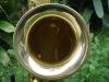 alto-sax-gold-laquer-1