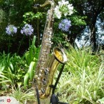 Tenor Saxophone Gold Laquer