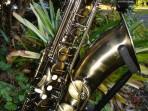 Alto Saxophone Camo Finish