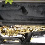Alto Saxophone Pearl Black